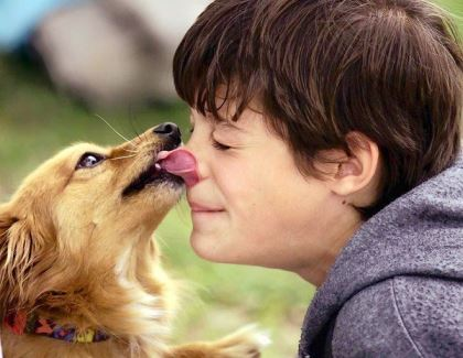http://childrensmd.org/browse-by-age-group/newborn-infants/kiss-your-dog-kiss-your-baby-but-not-together/
